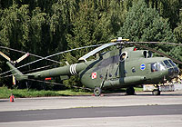 Helicopter-DataBase Photo ID:4407 Mi-17 1st (37th) Army Aviation Wing 602 cn:106M02