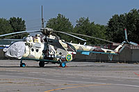 Helicopter-DataBase Photo ID:16006 Mi-171Sh Kazakhstan Border Guard 25 yellow