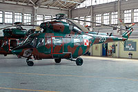 Helicopter-DataBase Photo ID:2265 PZL W-3 RR  Procjon 66th Aviation Wing 203 cn:300203